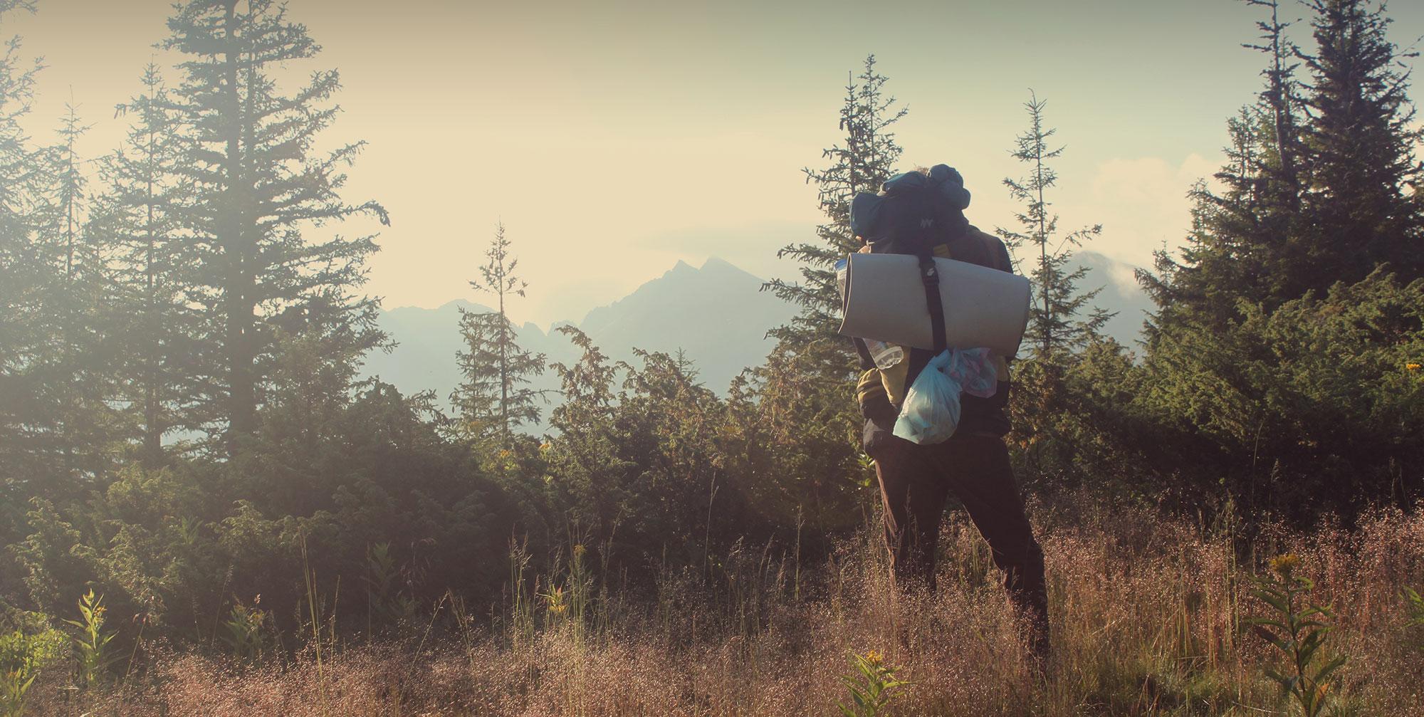 Andarilho observando o horizonte em uma floresta