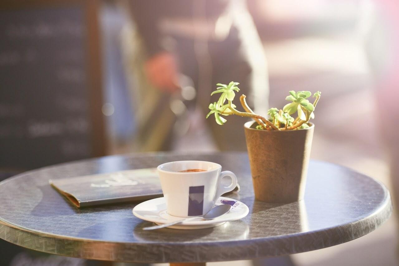 cafe-chapada-diamantina-o-melhor-do-brasil